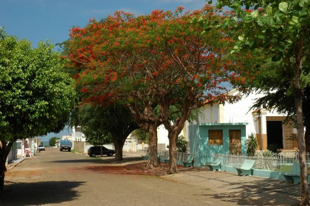 Anísio de Abreu Piauí fonte: portalosertao.com